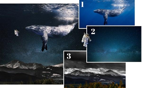 Bij het samenvoegen van deze beelden leer je de beste toepassing voor de belangrijkste gereedschappen in Photoshop.