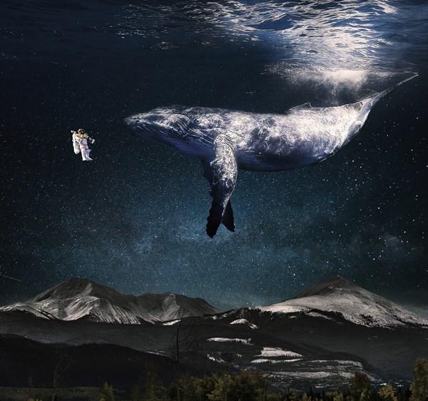 Rob de Winter_walvis-astronaut